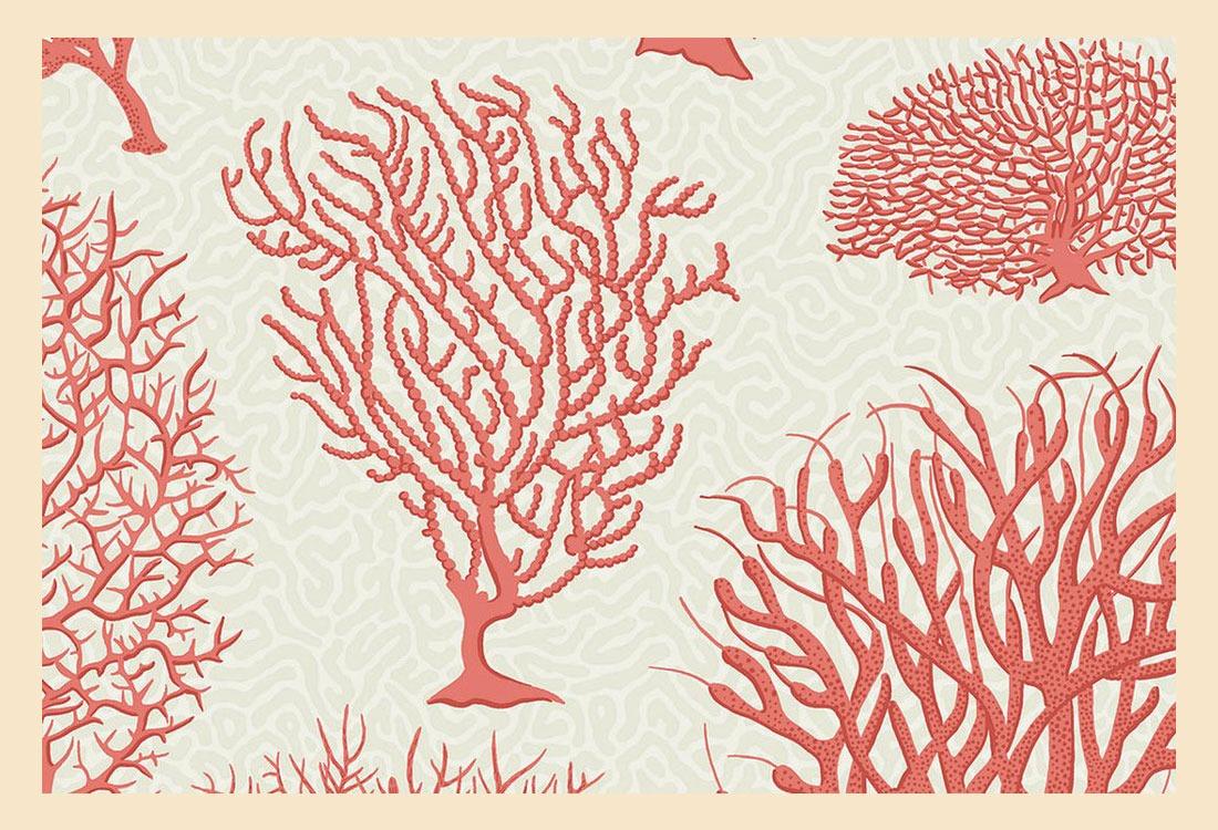 Warna Coral Perindah Rumah
