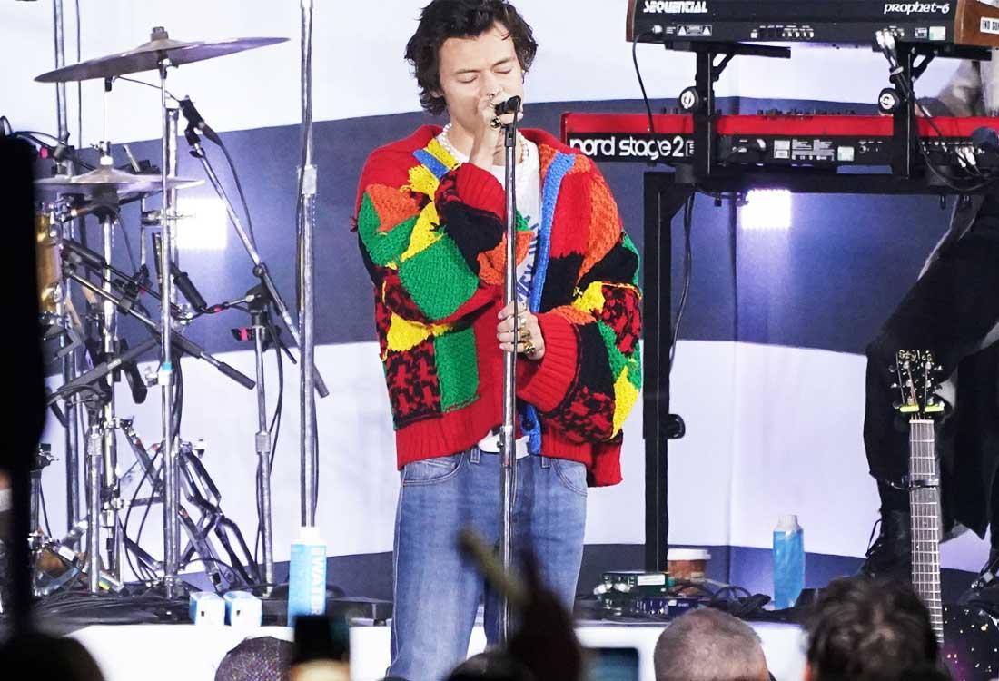 harry styles cardigan