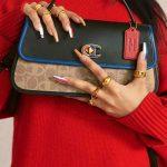 February Fashion News : LV Aerorgam, Double 'C' & Kempen Gucci!
